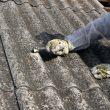 Uklonimo azbest iz životne okoline